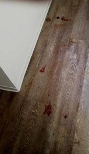 Eine Spur aus Blut